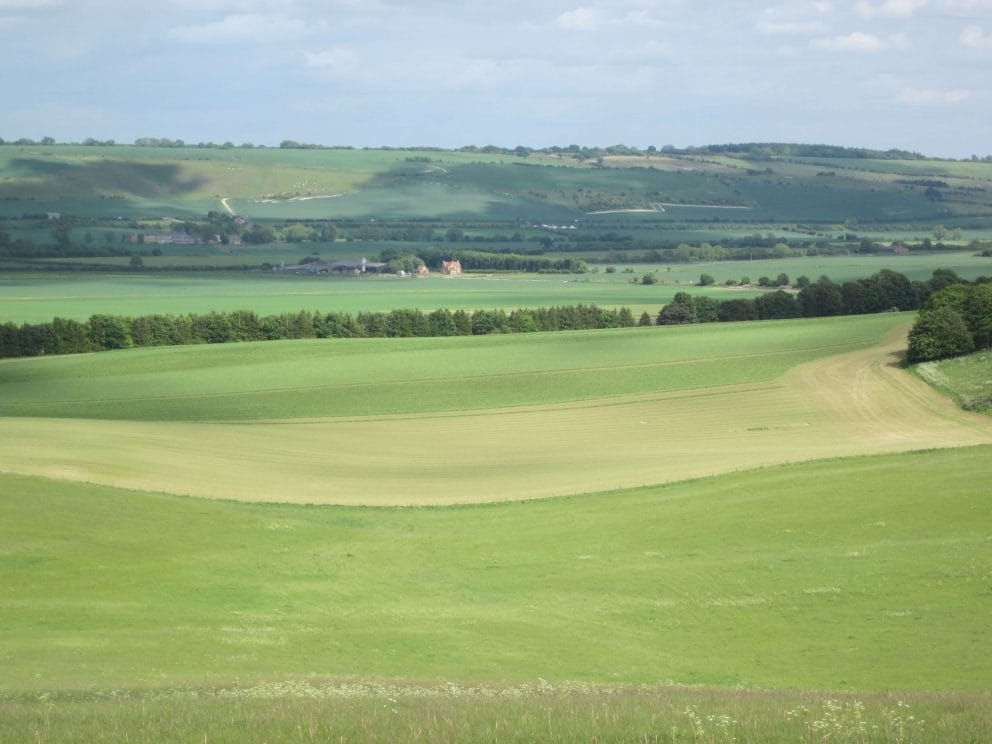 525 Acres Marlborough Downs