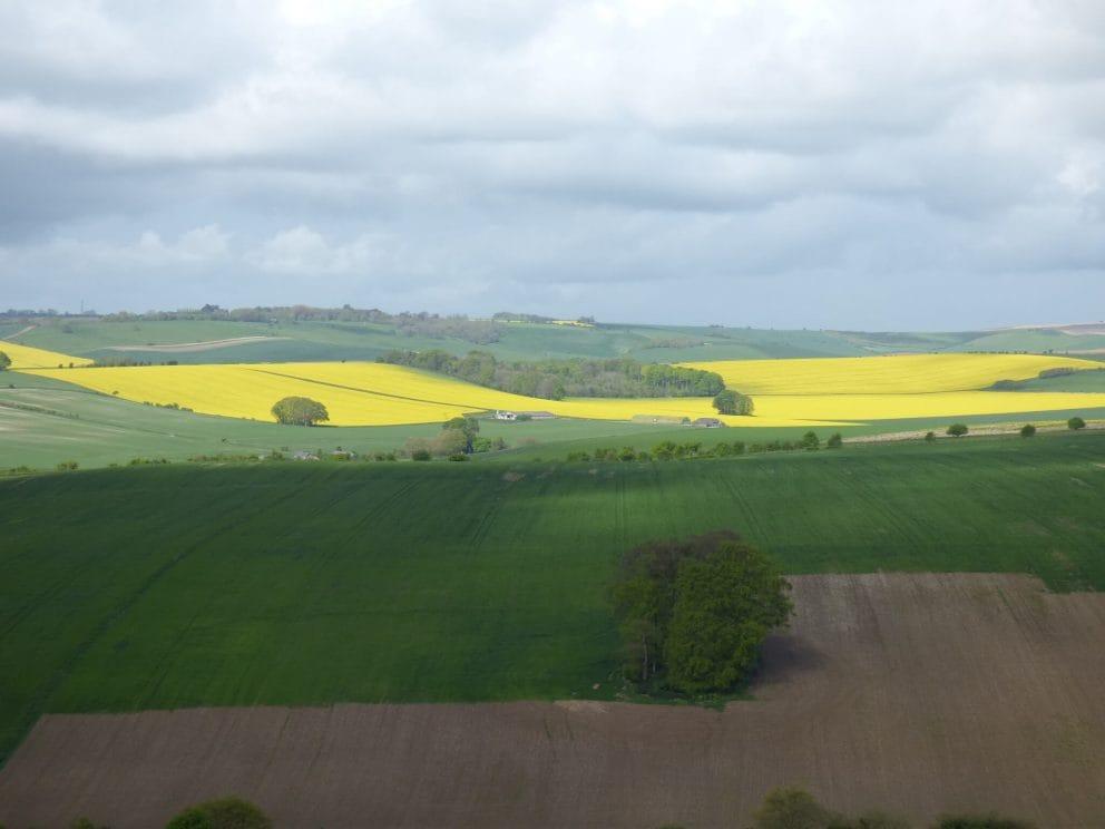 Baydon Land 1